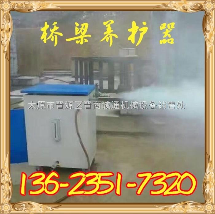 天津桥梁养护器_36KW全自动蒸汽发生器厂家