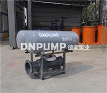 堤坝泵站潜水轴流泵
