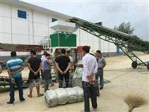 上海粉料包装秤