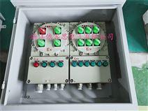 BXM51户外防爆配电箱加防雨罩IP65
